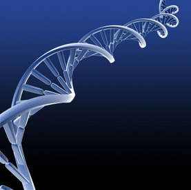 DNA or ZNA, which affects health more?